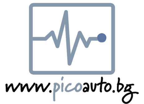 picoauto_bg-logo